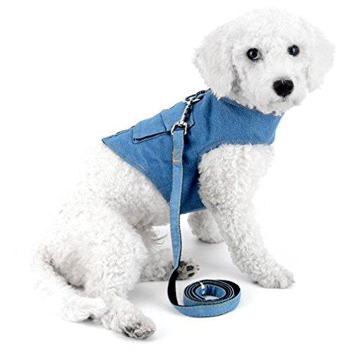 ranphy Kleiner Hund/Katze Comfort Control Dog Walking Geschirr Denim Jean Jacket Soft Mesh Hundegeschirr Pet Walking Weste Puppy Geschirre mit Pocket (Strass-pocket-jeans)
