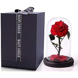 Rosa bella y bestia JTTVO flores preservadas rosa eterna en cúpula regalos para tu novia san valentin madres cumpleaños navidad esposa regalo de aniversario boda