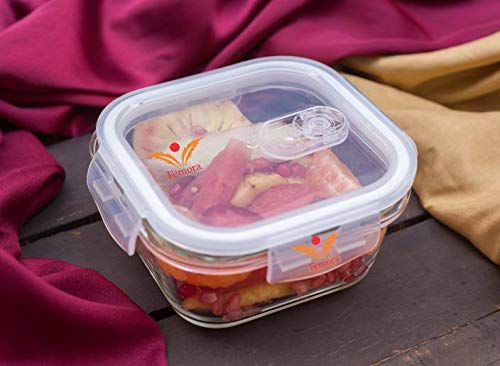 Femora Borosilicate Square Glass Food Storage Container with Air Vent Lid -300 ml