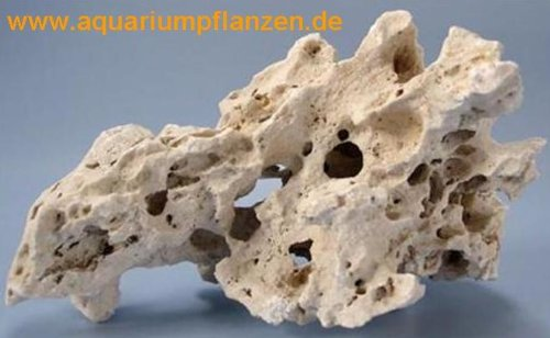 approx. 3 kg Perforated Rock large, Malawibasin aquarium 1