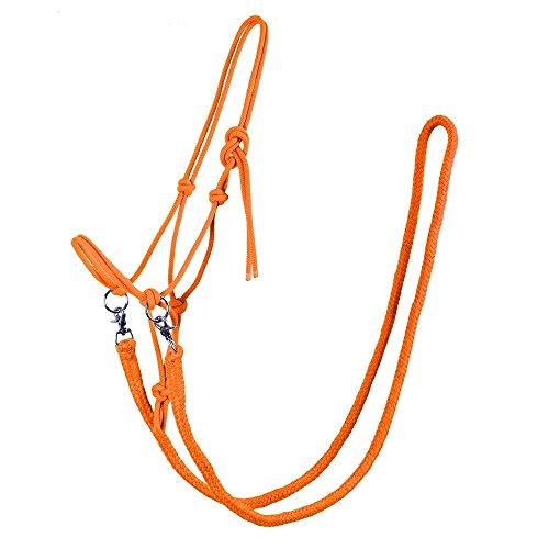 netproshop Knotenhalfter mit Zügel in tollen Farben für Shetty, Pony, Cob, Full Farbauswahl, Groesse:Full, Farbe:Orange