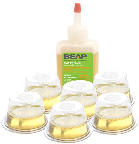 beapco-10036-toiletry-bag-drop-ins-fruit-fly-trap-pack-of-6