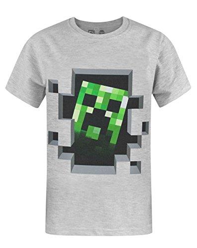 Camiseta de Minecraft