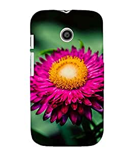 PINK BLOOMING FLOWER DEPICTING THE BEAUTY OF NATURE 3D Hard Polycarbonate Designer Back Case Cover for Motorola Moto E XT1021 :: Motorola Moto E (1st Gen)