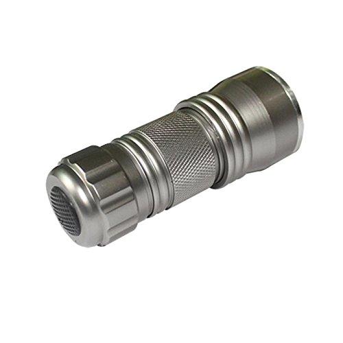 AmyGline LED Taschenlampe Anti-Falsch UV Taschenlampe Fluoreszierende Detektions lampe Ultra Violet 21 LED Taschenlampe Mini Schwarzlicht Aluminium Taschenlampe NEU -