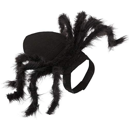 Meme Kostüm Einfach - QDZSQFF Katze KostüM Hund Kleidung Haustier Spinne KostüM Halloween Haustier Spinne Kleidung Hund Katze Horror Simulation Spinne KostüM M