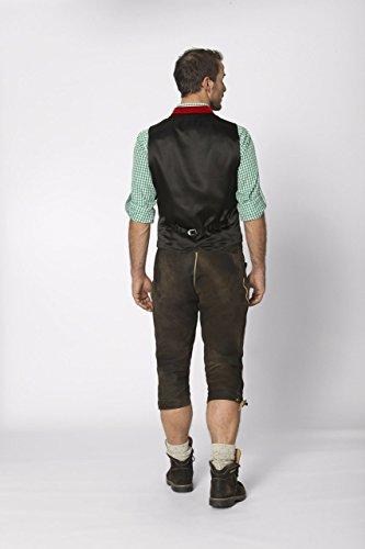 Stockerpoint - Herren Trachten Weste in verschiedenen Farbtönen, Calzado, Größe:58, Farbe:Dunkelrot - 4