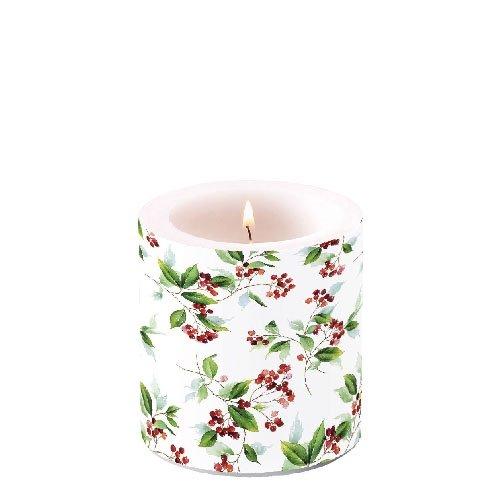 Ambiente Weihnachten Kerze Holly & Winter Blattwerk 7,6?cm Stumpenkerze 8?cm hoch Winter Holly