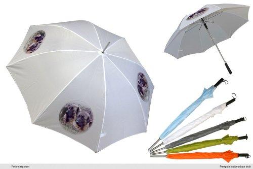 parapluie-blanc-golf-chien-cao-da-serra-da-estrela