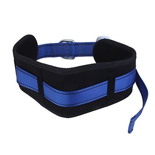 Protezione Anticaduta Cintura Di Sicurezza Albero Cintura Di Arrampicata Su Roccia Con 2 Anelli A D