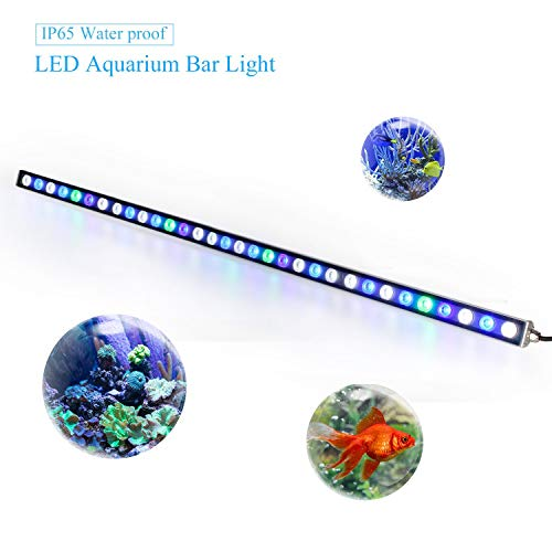Roleadro Eclairage Aquarium Led 115cm 108W IP65...
