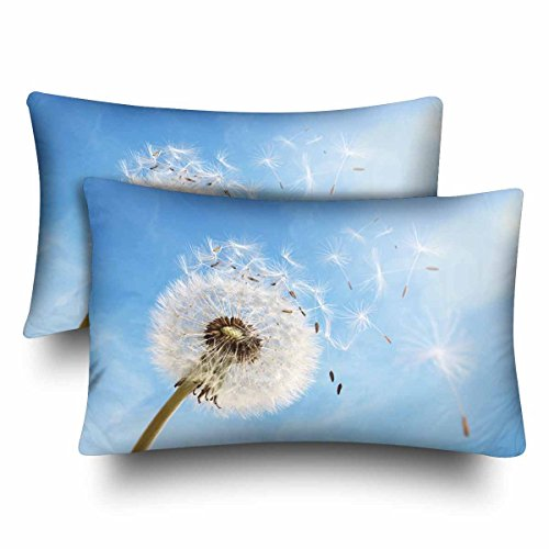 InterestPrint Kissenbezüge Pusteblume Botanical Blue Sky Distel Floral Flower Kissenbezug Standard Größe 20x30 Set von 2 rechteckigen Kissenbezügen Schutz für Home Couch Sofa Bettwäsche Deko (X Floral 20 20 Kissenbezug)
