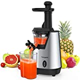 Best Masticating Juicers - Homgeek Slow Masticating Juicer,Electric Juice Extractor with 200W Review