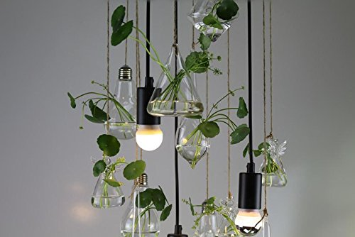 gbt-moderne-restaurant-verre-salon-balcon-plante-lustres-lumieres-led-lumiere-chaude-lumiere-blanche