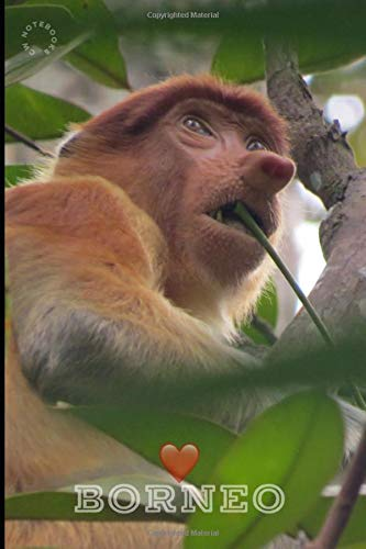 Borneo: 120 Lined Pages Notebook | 6x9 | Proboscis Monkey In The Wild In Borneo | Gift Idea For Travellers, Explorers, Backpackers, Campers, Tourists | Holiday Memory Book
