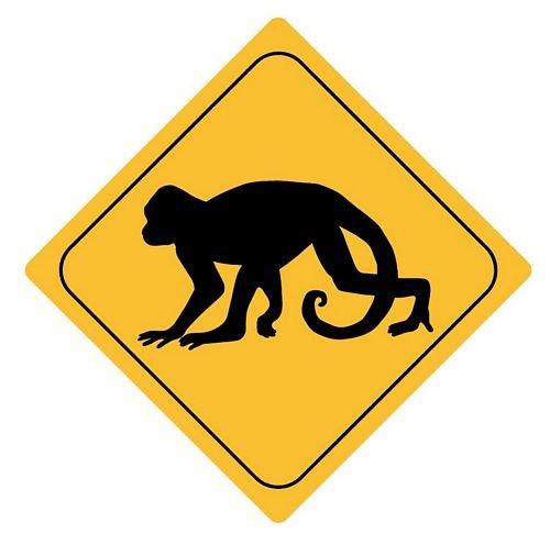 Autoaufkleber Sticker Achtung Affe Aufkleber