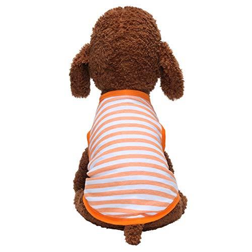 Gemütlichkeit Breathable Haustier Kostüme Hawkimin Haustierkleidung Kleidung für Hunde Katze Pet Puppy Dog Cat Clothes,Haustier Atmungsaktives Hundekleidung Stripe T-Shirt Welpenkostüm -
