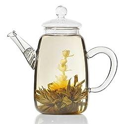 Goods & Gadgets Teekanne aus Glas mit Teefilter Klassische Tee-Filter Kanne 600ml von Dimono