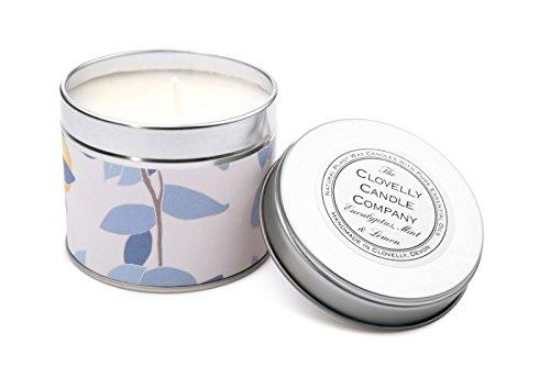 Clovelly Candle | Duftkerze aus Eukalyptus, Minze und Zitrone | 40 Stunden Duft | Im Vereinigten Königreich mit 100% Naturprodukten handgefertigt| Entspannung, Komfort und Beruhigung - 100% Reines Eukalyptus-minze