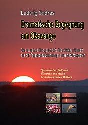 Dramatische Begegnung am Okavango