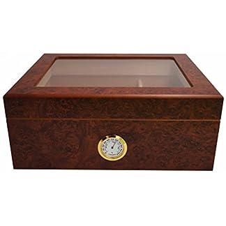 GERMANUS Humidor de Puros Desk I con Higrómetro y Humidificador y el Manual Germanus Libro en Marrón