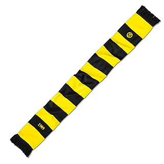 BVB Herren Schal mit Blockstreifen, schwarz/gelb, One size, 2466646