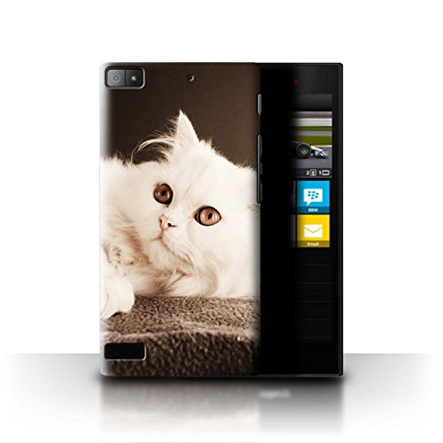 Stuff4® Hülle/Case für BlackBerry Z3 / Perser Lange Haare Katze Muster Katze/Katzenrassen Kollektion