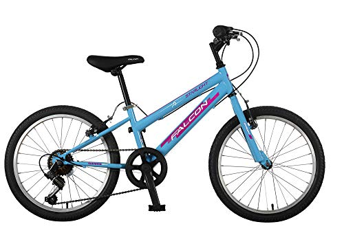 Falcon Girls' F3201002 Starlight G20, Sky Blue, 20'' Best Price and Cheapest