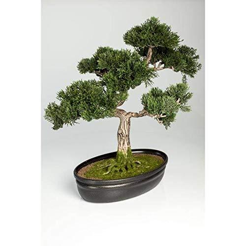 artplants.de Künstlicher Bonsai Zeder in Dekoschale, 230 Zweige, 40cm - Hochwertiger Kunstbonsai Ceder