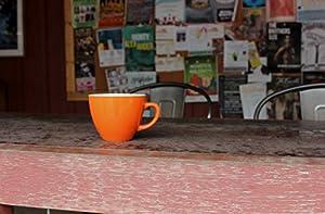 Ceature Cups Fuchs-Keramiktasse (325 Milliliter, Orange) | Auf der Innenseite versteckte Tiermotive | Weihnachts- und Geburtstagsgeschenk für Kaffee- und Teeliebhaber