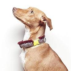 Collar Perro Diseño Original Handmade FLECOS: Amazon.es: Handmade