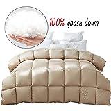 MAI&BAO Bettdecke Warm Zudecke 100% Daunen Atmungsaktive und Hautsympathische Gesteppte Steppdecke für Einzelbett Doppelbett Erwachsener Kind Schwangere Frau,150x215cm