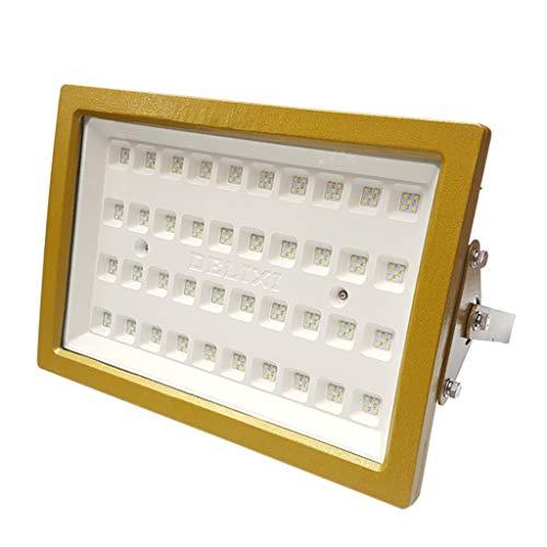 LED Scheinwerfer, Explosionsgeschützt Sicherheit Suchscheinwerfer Notfall Gas Kreuzfahrtschiff Quadratisches Licht Aufladung Gehärtetes Glas (größe : 160W)