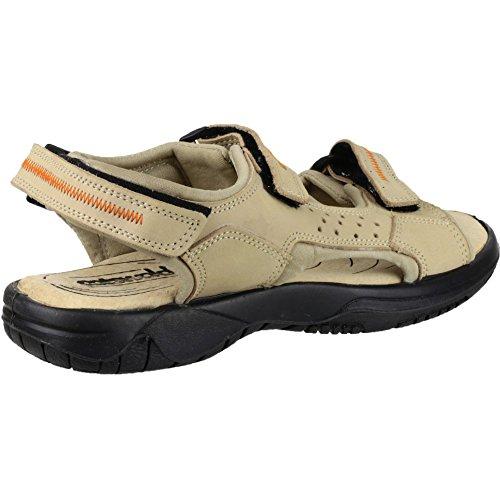 Cotswold Cowley Femmes Été Chaussures Femmes Chaussures Sandale Été Cuir Crème