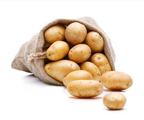 FRUCHTVERSAND24® Kartoffeln Alexandra -vormals Linda- (Speisekartoffeln) 12,5kg