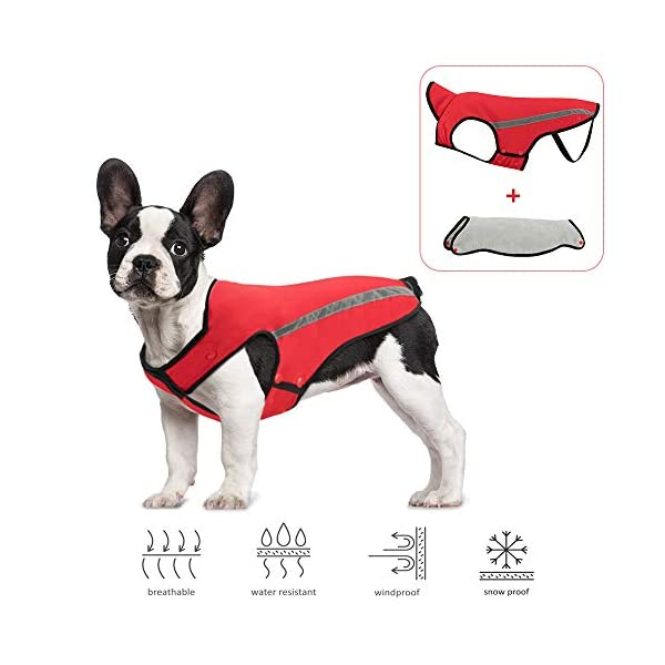 SlowTon Dog Winter Jacket, Detachable Flannel lining Dog Coat Adjustable Neck and Chest Size Pet Vest with Reflective Stripe Waterproof Windproof Snowsuit Keep Warm for Small Medium Large Dogs … 1