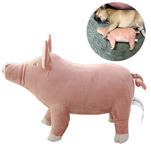 Legendog Haustier Spielzeug Kreative Schwein Gefüllte Kissen Spielzeug Hund Schlafen Spielzeug Haustier Plüschtier für Hunde (Spielzeug Schwein Gefüllte)