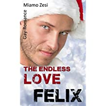 Felix: The endless love