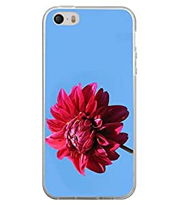 ifasho Designer Back Case Cover for Apple iPhone 5 ( Dating Guntakal Mumbai Malegaon Wedding Planner)