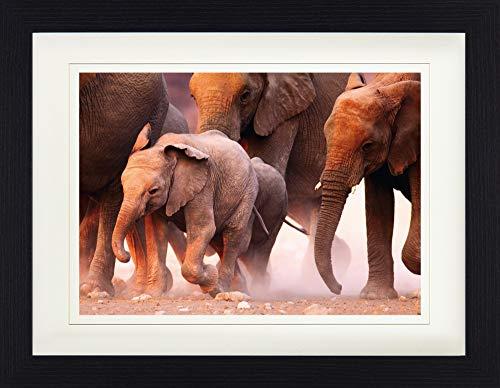 1art1 113616 Elefanten - Elefantenherde, Namibia Gerahmtes Poster Für Fans Und Sammler 40 x 30 cm -