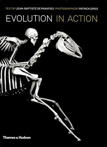 Evolution in Action: Natural History Through Spectacular Skeletons. Jean-Baptiste de Panafieu and Patrick Gries by Jean-Baptiste De Panafieu (2011-09-01)