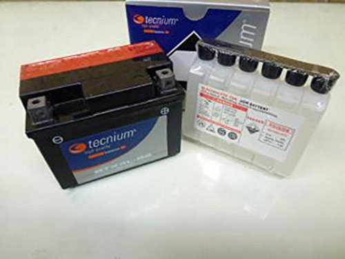Batteria per Tornado PGO del 1998 a 50 cc, 1998 YTX4L-BS stato nuovo Tecnium 12 V, 3Ah-fornita con acido batteria