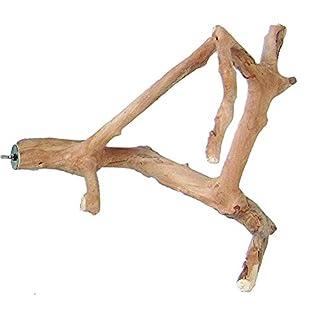 A&E Cage Co. Java Wood Multi Branch Perch - Small - 16 in. x 1.2 in. 4