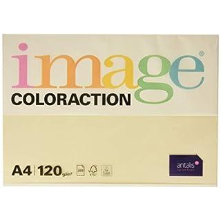 Coloraction 461351 - Antalis Kopierpapier, DIN A4, 120 g/qm, Farbe: dune - creme