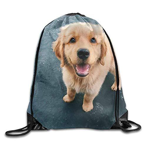 False warm warm Small Golden Retriever Drawstring Backpack Rucksack Shoulder Bags Training Gym Sack for Man and Women - Roxy Rolling Rucksack