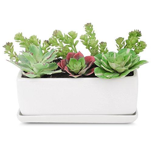 Pure.Lifestyle Porzellan Blumentopf, Rechteckig Sukkulenten Topf mit Untersetzer, 2-teilig Pflanzgefäß, Matt Weiß - Internationalen Porzellan