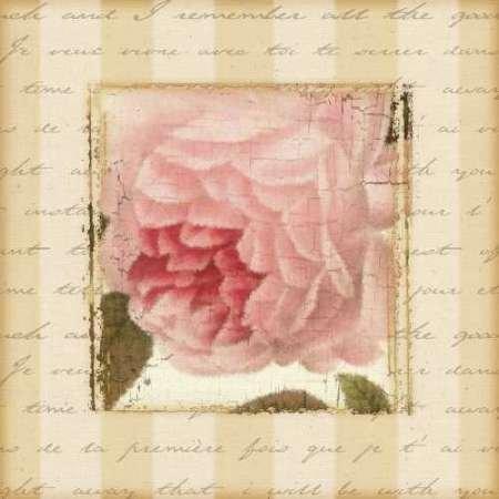 rose-and-romance-ii-par-pela-design-imprime-beaux-arts-sur-toile-moyen-57-x-57-cms