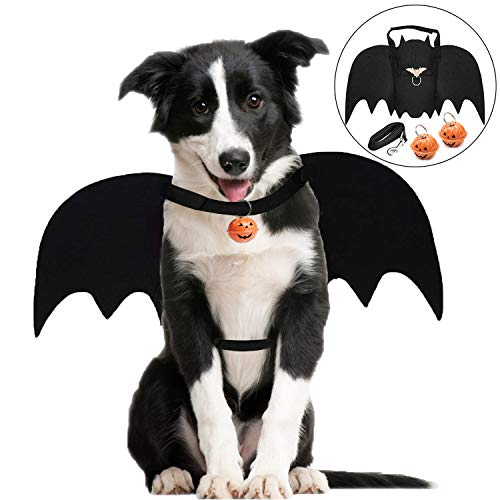 Halloween Kostüm Hinweis - Legendog Halloween Hund Kostüm, Halloween-Haustier-Kostüm-kreatives Hundeschläger-Kostüm-Hundepartei-Kostüm mit Leine