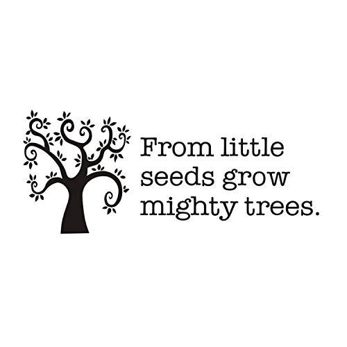 liuweidedian Von Little Seeds Wachsen Mächtige Bäume Inspirierend Zitat Wandtattoo DIY Vinyl Aufkleber Für Kinderzimmer Dekoration Zubehör 134X56 cm - 3x4 Wachsen Zelt