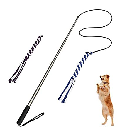 POPETPOP Interaktive Hundespielzeug Hunde Draussen Angel Kauspielzeug mit 2 Seil Hundeangel Pole Haustier Teaser für…